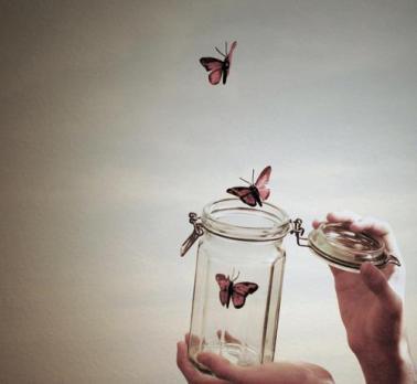 set free butterfly