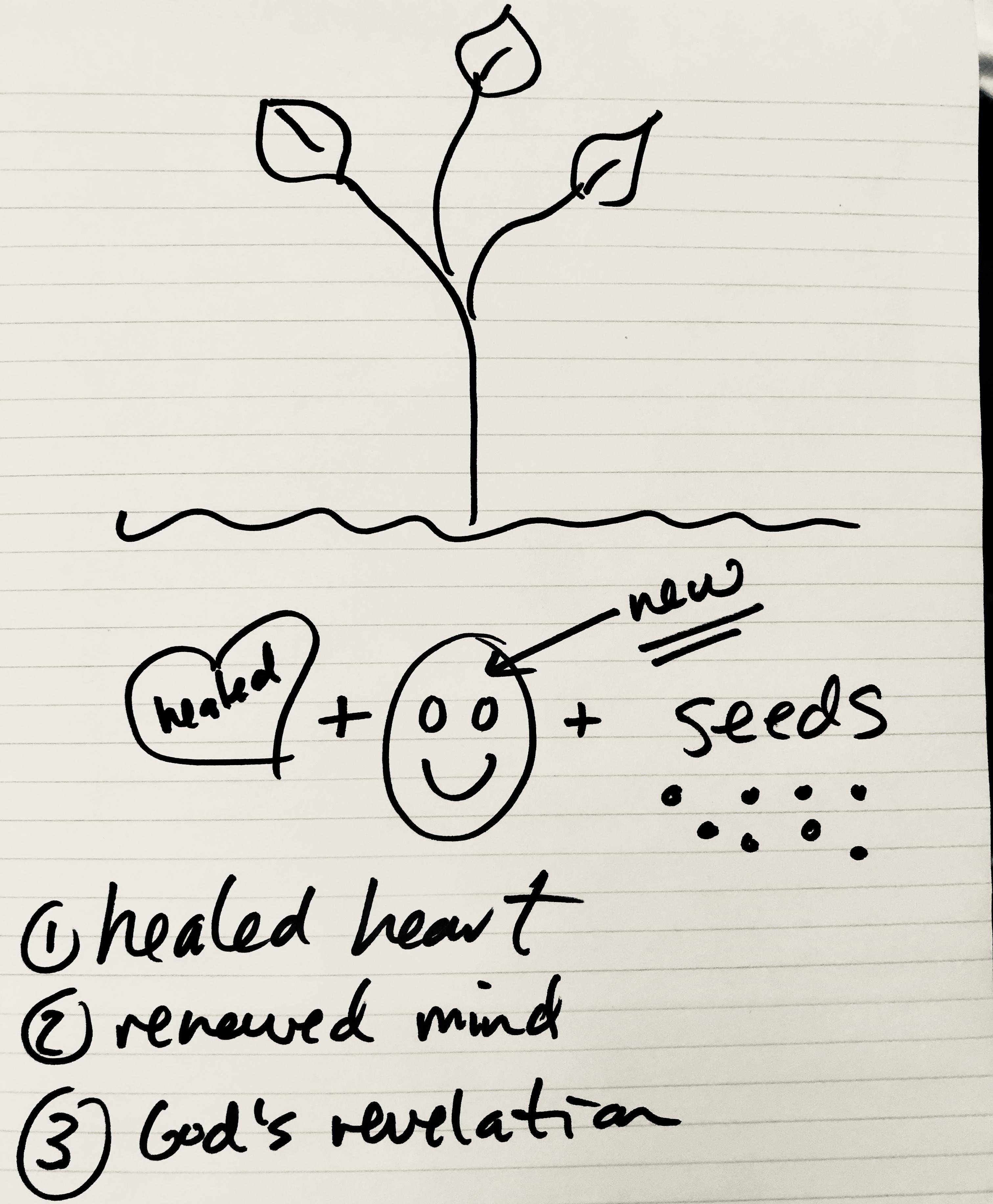 soil to grow1